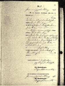 1876 Death Registration